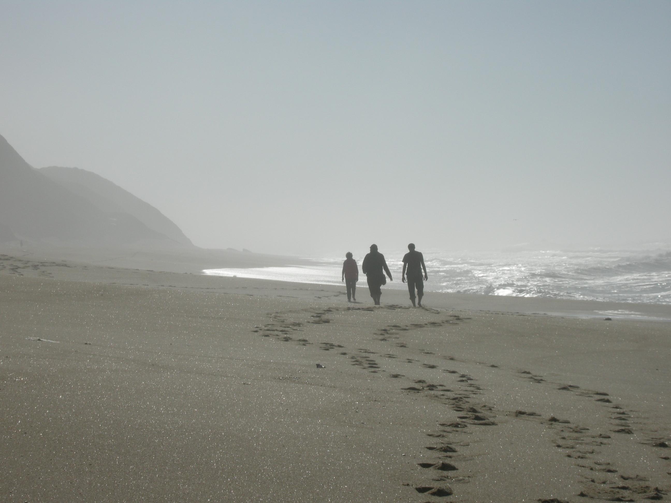 Jan 2013 Strandläufer