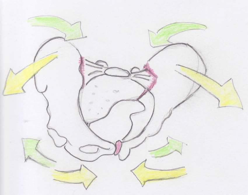 Bewegtes oder starres Becken? | Medizinisches Coaching